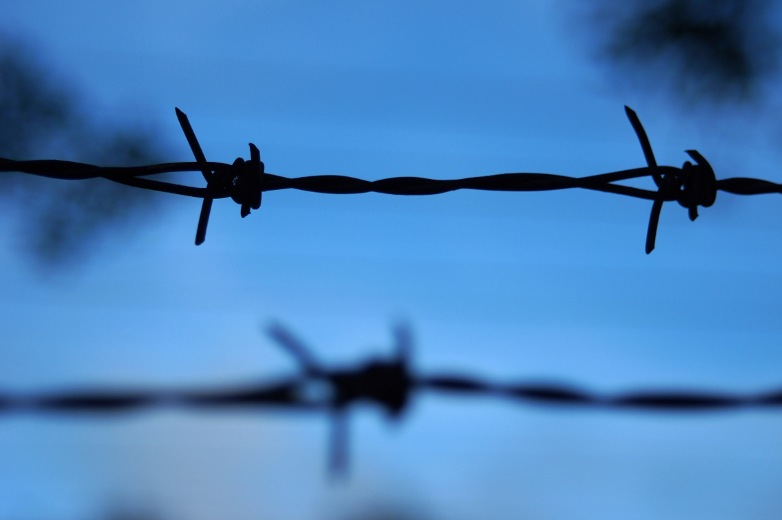 Barbed Wire at Blue Hour